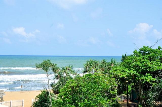 Green Shadows Beach